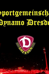 Vorschau Dynamo Dresden Handy Logo